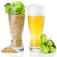 Hops Extract Manufacturers
