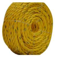 Danline Rope Manufacturers