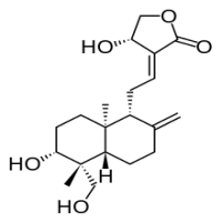 Andrographolide Manufacturers