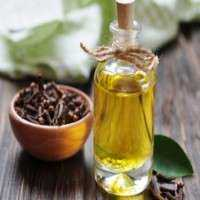 Clove Oil Manufacturers