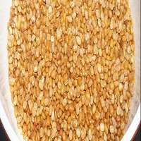 Roasted Moong Dal Manufacturers