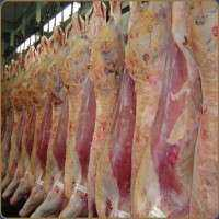 Slaughtered Meat Manufacturers