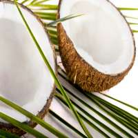 Coconut Vinegar Manufacturers