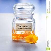 Calendula Officinalis Extract Manufacturers