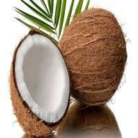 Coconut Manufacturers