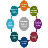 软件测试自动化服务 制造商