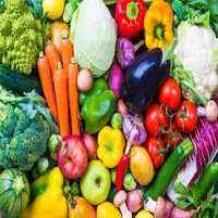 Organic Vegetable Manufacturers