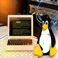 Linux Administration Services Manufacturers
