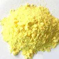 Organic Maize Flour Manufacturers
