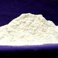 Para Chloro Meta Xylenol Manufacturers