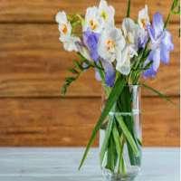 Cut Flowers Manufacturers