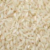 Medium Grain Rice Manufacturers