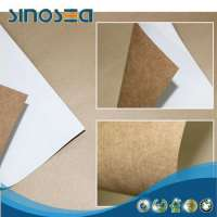 White Top Kraft Liner Manufacturers