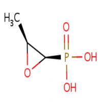 磷霉素 制造商
