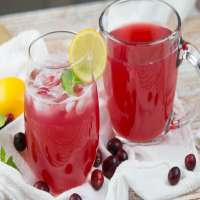 Cranberry Juice Manufacturers