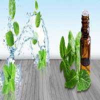 Spearmint Oil Manufacturers