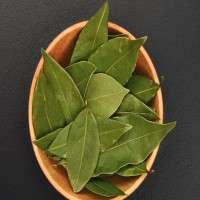 Bay Leaf Manufacturers