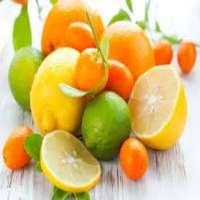 Citrus Fruits Manufacturers