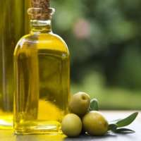 Plant Oil Manufacturers