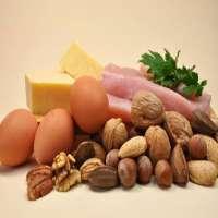 膳食蛋白质 制造商