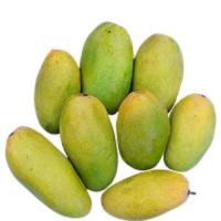 Amrapali芒果 制造商
