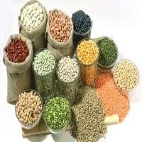 杂交种子 制造商