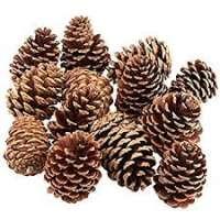Pine Cones Manufacturers