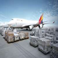 Air Freight Pallets Manufacturers