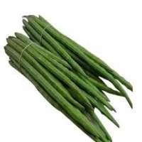 Organic Drumsticks Manufacturers