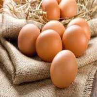 Organic Egg Manufacturers