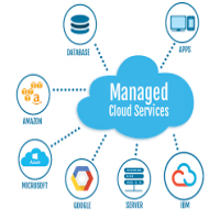 Cloud Management Service Manufacturers