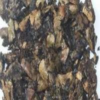 Cashew Nut Shell Cake Manufacturers
