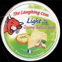 奶酪酱 制造商