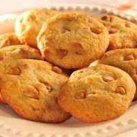 Orange Cookies Manufacturers