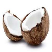 Coconut Flavor Importers