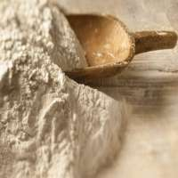 Fortified Flour Manufacturers