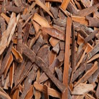 Cinnamon Bark Manufacturers