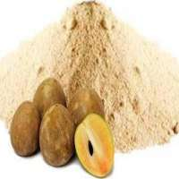 Chikoo Powder Manufacturers