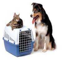 Pet Transportation Services Manufacturers