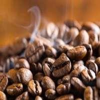 烤咖啡 制造商