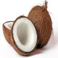 Semi Husked Coconut Manufacturers