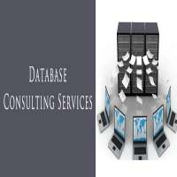 Database Consulting Services Manufacturers