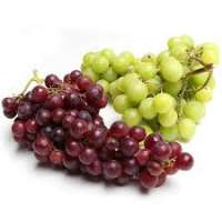 Seedless Grapes Manufacturers