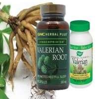 Valerian Extract Manufacturers