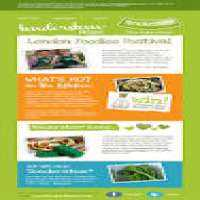 E Mail Newsletters Design Service Manufacturers