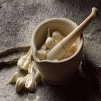 Garlic Extract Manufacturers
