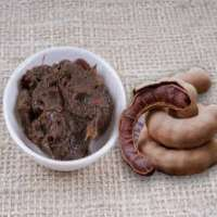 Organic Tamarind Paste Manufacturers