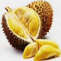 Durian Fruit Manufacturers