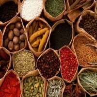 Spice Herbs Manufacturers