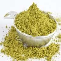 Gymnema Sylvestre Extract Manufacturers